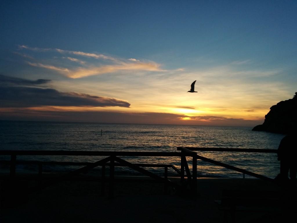 毎晩海沿いのレストランで夕陽を見ながら