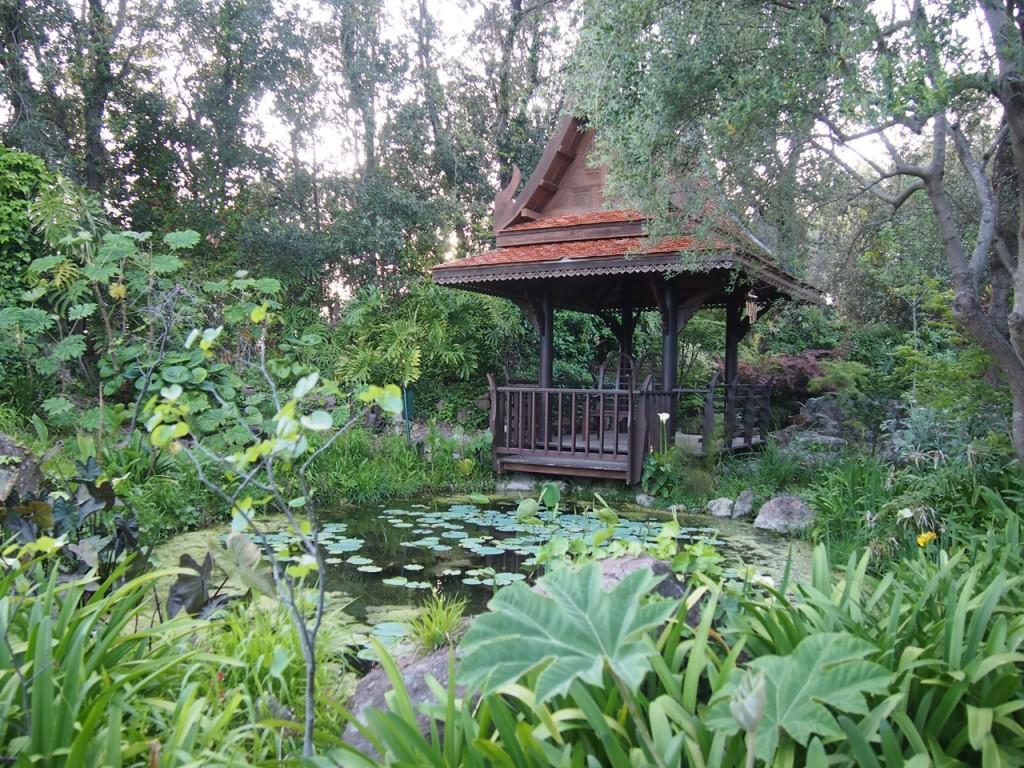 東洋趣味のエリアも…写っていませんが竹やモミジもありました。