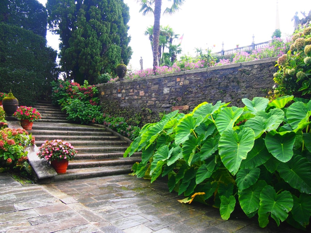 階段が多くお庭自体が立体的です